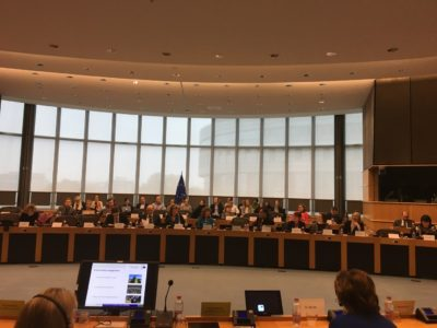 Workshopen genomfördes symboliskt nog i Raoul Wallenbergs rum i Europaparlamentet (Altiero Spinellibyggnaden 5G2) Foto: Mikael Schultz