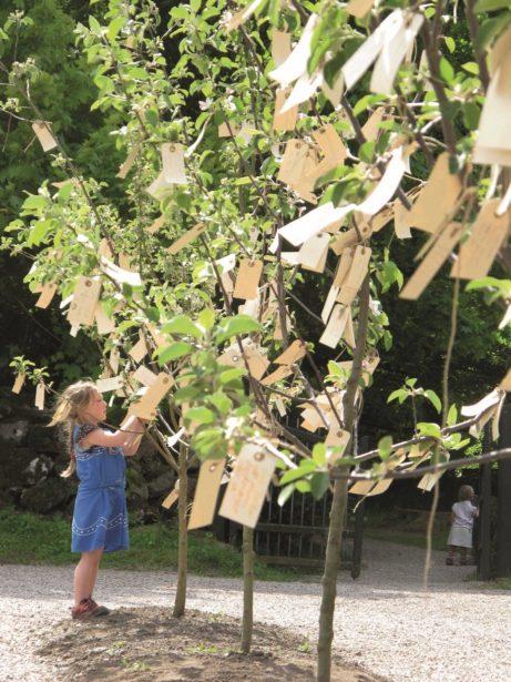 Yoko Ono_Wish Trees for Wanas, 1996 2011_Wanas Konst_Photo Mattias Givell.small