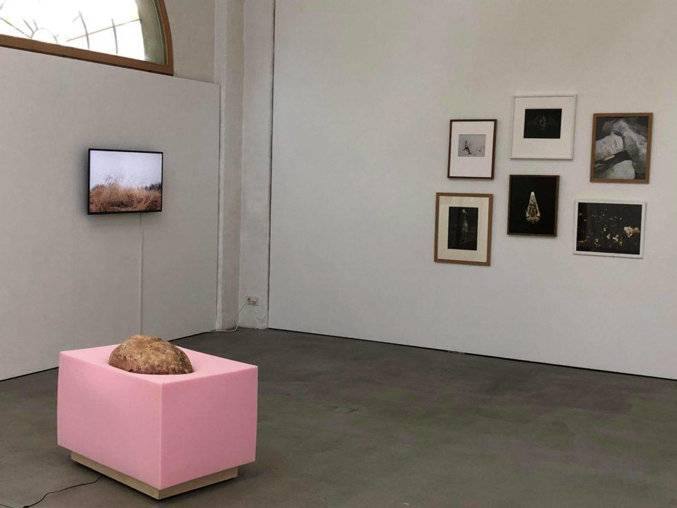 Bilden visar olika konstverk i ett galleri: ett videoverk med landskap, ett stort fyrkantigt objekt av rosa skumgummi med en sten ovanpå samt sex fotokonstverk.