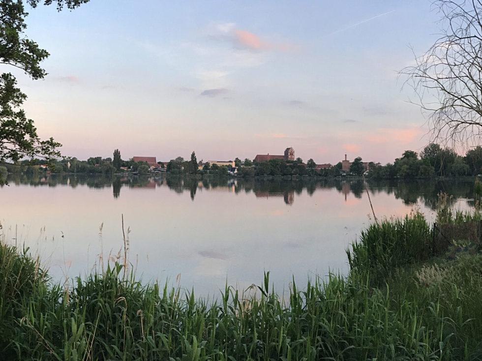 Bild över staden Angermünde. I förgrunden syns grön vass framför en sjö. På bortre stranden ser man stadens konturer.